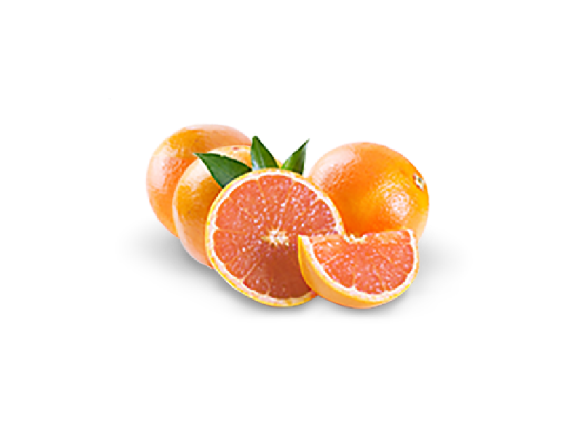 Manolitos Grapefruits-Frischekisten